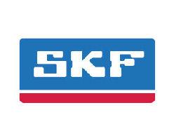 SKF Bearings photo