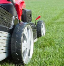 Lawn & Garden Belts photo