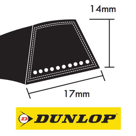 Dunlop SPB Section Wrapped Wedge Belts 17x14mm photo