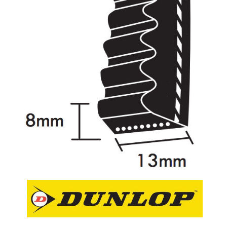 Dunlop AX Section Cogged Wedge Belts 13x8mm photo