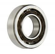 SS7203 Budget Brand Single Row Stainless Steel Angular Contact Bearing 17x40x12