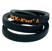 A116 PIX A Section V Belt