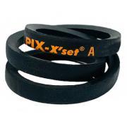 A124 PIX A Section V Belt